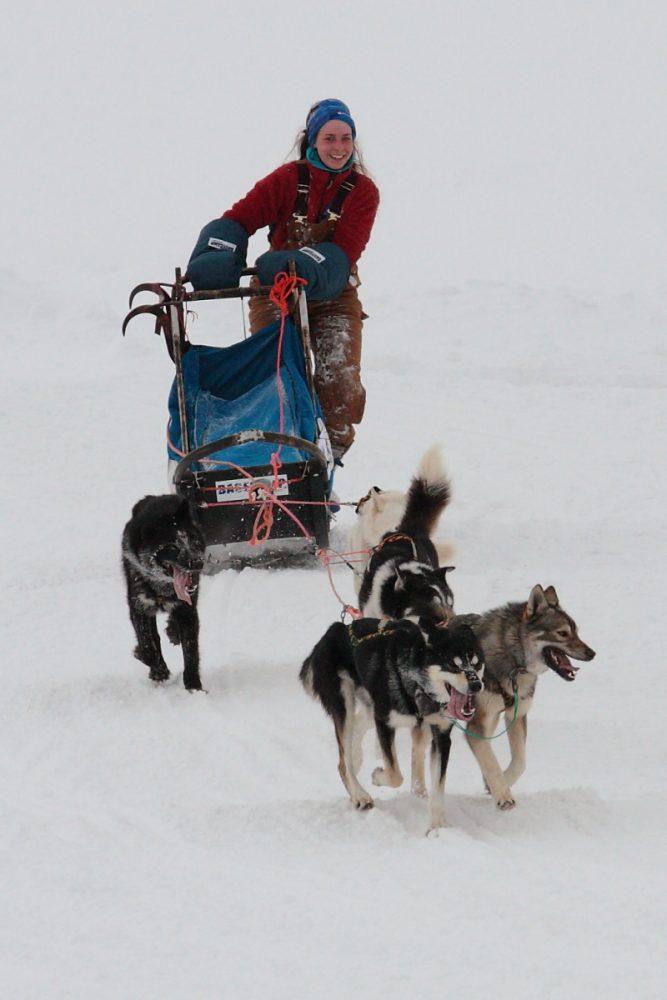 Arktis, Arctic, Svalbard, Spitzbergen, Longyearbyen, sled dog race, Schlittenhund, Hans-Joachim Eggert