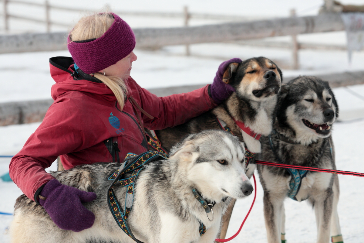 Trappers Trail  - The world's northernmost sled dog race, Arktis, Arctic, Svalbard, Spitzbergen, Longyearbyen, sled dog race, Schlittenhund, Hans-Joachim Eggert