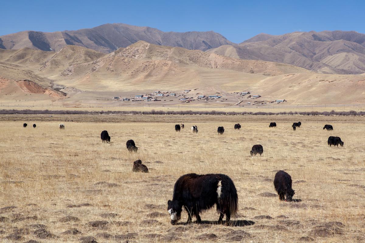 Asia, Asien, China, Gansu, Sangke Grasslands, Valley, Tal, Hans-Joachim Eggert