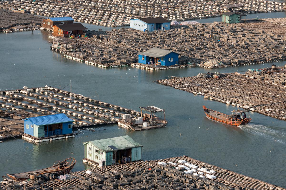 Luoyuan Bay Xiapu Mudflats Fujian China Fischfarm Fischzucht