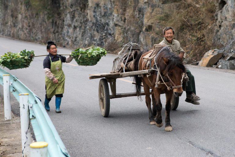 Eine Frau trägt in zwei großen Körben ihre Ernte nach Hause, während sie ein Mann auf einer Pferdekutsche auf einer Landstraße überholt. Shiqiiao liegt im Süden der Provinz Guizhou, die sehr landwirtschaftlich geprägt ist. Shiqiao - Guizhou - China