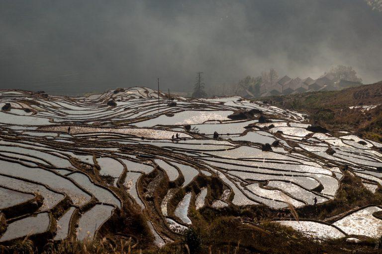 Reisterassen in der Umgebung vom Dorf Ping'an. Guangxi - China