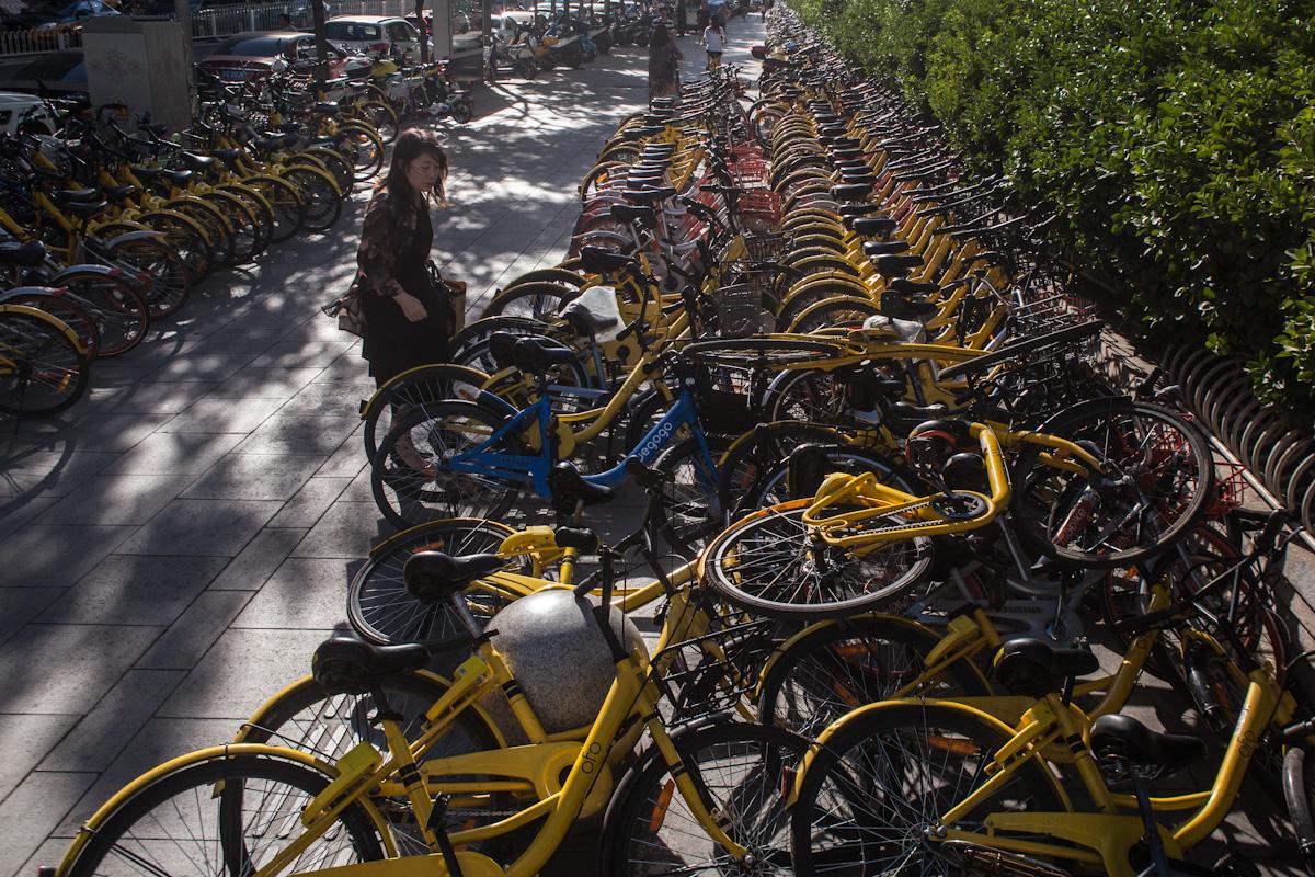 Auf einem Gehweg mit vollgestellten Leihfahrrädern, will eine Frau ein Fahrrad ausleihen. Peking - China