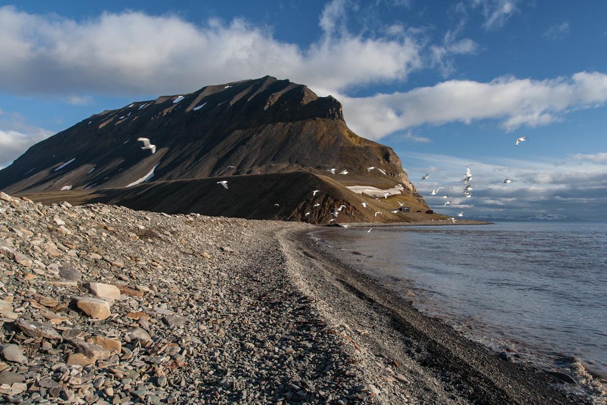 arktis arctic spitzbergen svalbard björndalen icefjord eisfjord winter snow schnee