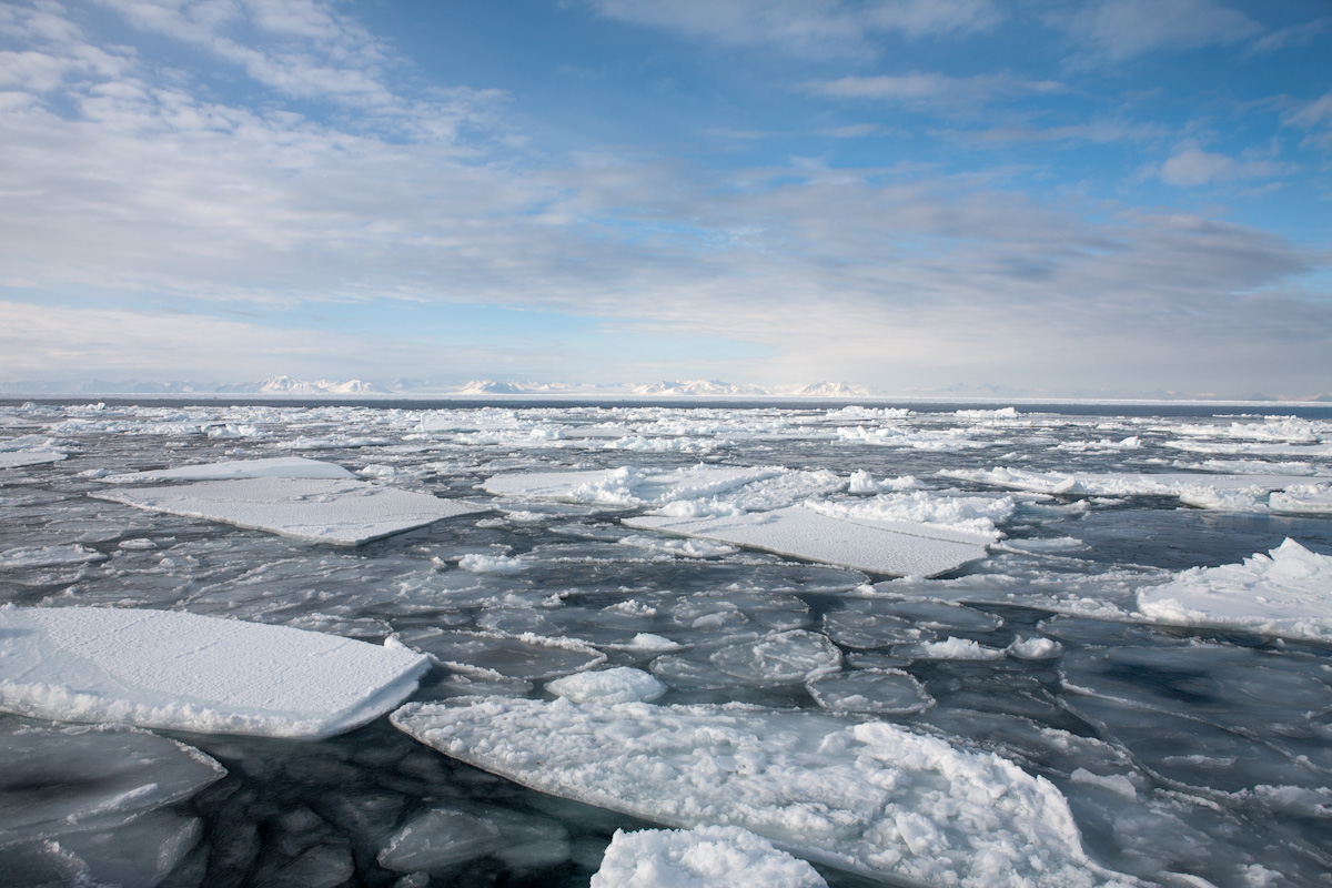 arktis arctic spitzbergen icefjord winter schnee snow ice eis